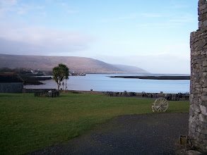 Photo: pretty view :) (palm trees in Ireland?!)