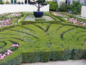 Photo: The immediate rear gardens include these hedges carefully trimmed into fleur-de-lis shapes. This symbol is particularly associated historically with the French monarchy, and remains an enduring symbol of France (on French postage stamps, for example) although it has never been officially adopted by any of the French republics.