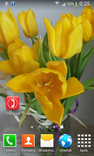 ENDcall PRO