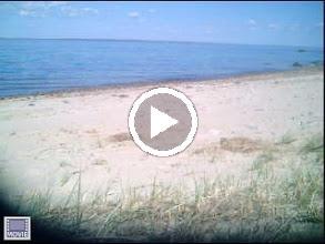 Video: North Shore MV