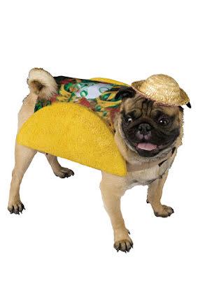 Hunddräkt, taco