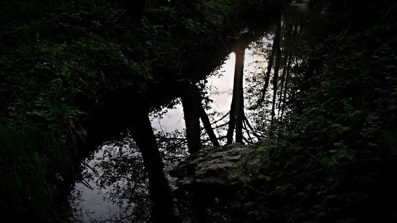 Un tramonto sulle sponde del torrente.... di Flavia Cantini PH