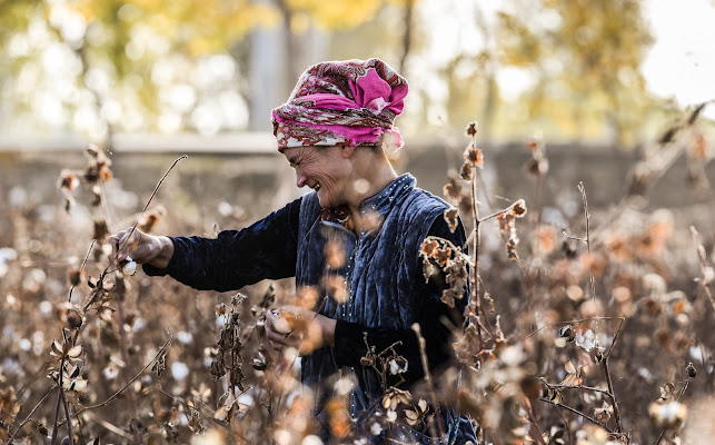 Raccoglitrice, contadina, madre, donna uzbeka di apo