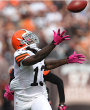 Photo: Josh Gordon hauls in a one-handed touchdown grab. (John Kuntz, The Plain Dealer)