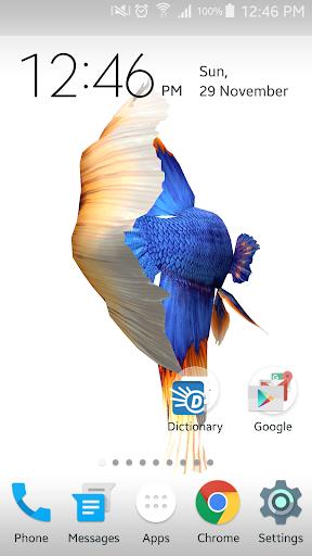 Betta Fish 3D screenshot 3