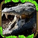 Wildlife Simulator: Crocodile icon