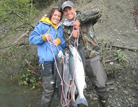 Photo: A limit of second run Kenai river red salmon.