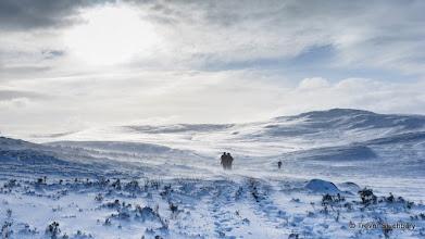 Photo: Frozen wasteland