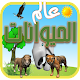 عالم الحيوانات Download for PC Windows 10/8/7