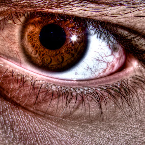 Eye by Daniel Tompkins - People Fine Art ( ball, eye )