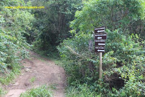 Placas com indicações das trilhas. Siga pela esquerda.