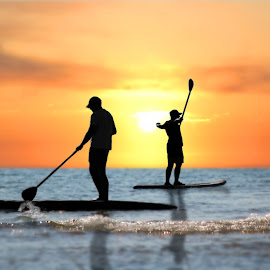 Paddleboards Two Men Sunset Silhouette by Robin Amaral - Sports & Fitness Watersports ( paddles, watersports, outdoor photography, waterscape, fitness, pair, silhouette, exuberance, exercise, ocean, paddleboard, recreation, sun, sky glow, tandem, sky, wellness, wellbeing, athlete, waves, healthy lifestyle, seascape, waterscapes, sunlight, shadows, duo, splashing, sunset, paddleboarding, paddle board, outdoor activity )
