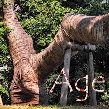 Photo: Age