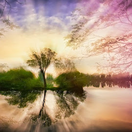 Waking by Laci Erdős - Digital Art Places ( water, reflection, sky, trees, lake )