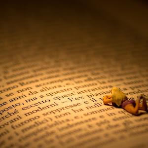 la lettrice di romanzi.jpg