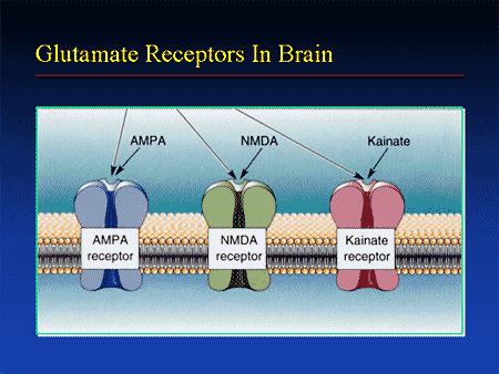 CBD affects brain receptors too.
