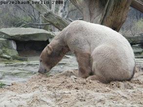 Photo: Ein pruefender Blick auf den Sandhaufen kann nicht schaden ;-)