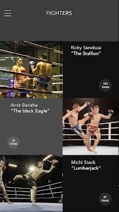 Fight Book - náhled