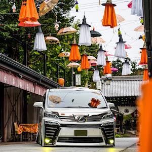 ヴェルファイア AGH30W Z-Gエディション 31年式のカスタム事例画像 しんちゃんさんの2021年10月18日06:15の投稿