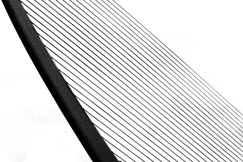 lines. di veronica df