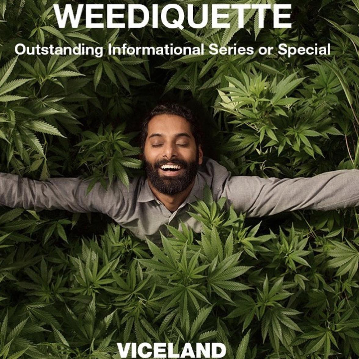 Krishna Sai Andavolu | Viceland's marijuana-based hit show, Weediquette