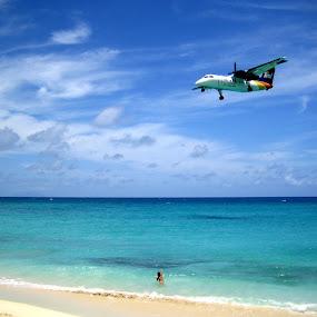 Plane Lands at St. Maarten  by Jacob Uriel - Landscapes Beaches ( dash-8, child, plane, sxm, liat, airplane, wave, beach )