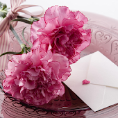 Carnation for Mum - Wallpapers