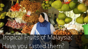 Tropical Fruits of Malaysia: Have you tasted them?
