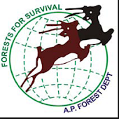 Silviculture of Species – AP
