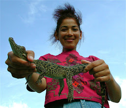 Photo: cuban crocodiles. Tracey Eaton photo