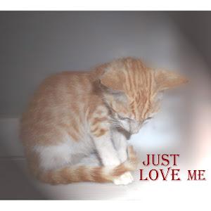 just love me.jpg