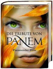 http://www.dtv-dasjungebuch.de/buecher/weil_ich_layken_liebe_71562.html