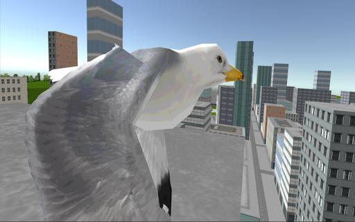 Miami Flying Bird