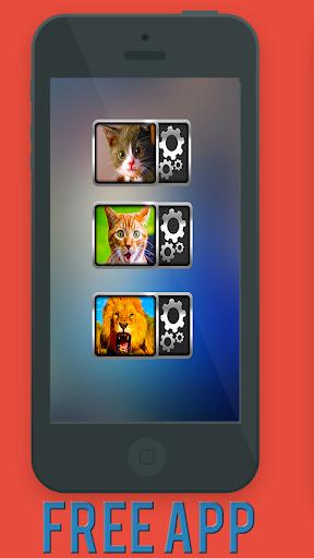 玩娛樂App|貓貓咪聲音小部件免費|APP試玩