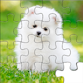 Puppy Jigsaw Puzzle Collection