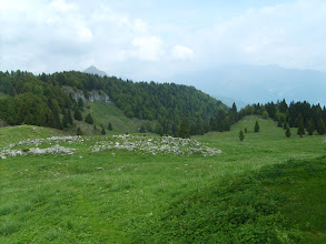 Photo: Si dovrebbe vedere il Brenta ..