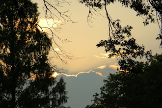 Photo: Day 42 ... A sunset from Sal and Debbie's backyard