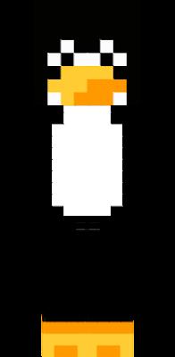 jest czarny ma biały brzuch i żółty dziub z nogami