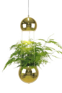 Globen Lighting Planter Taklampa Mässing - lavanille.com