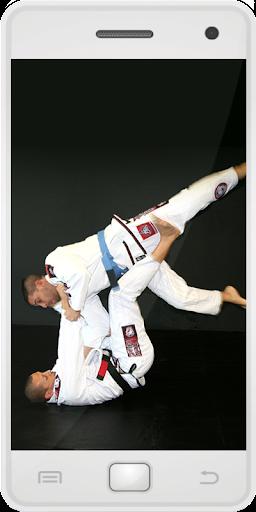 ブラジルの柔術