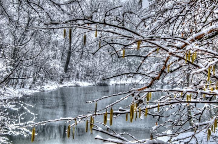 Sotto la neve di lele.r