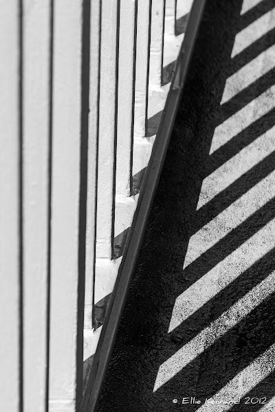 Photo: Light Tracks