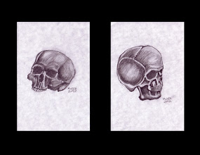 Photo: Skulls – Study. Each is 4 inches x 6 inches or 10 cm x 15 cm. HB graphite on medium weight acid-free paper. Sealed with a fixative. Signed and date on the front. Comes in a clear bag with cardboard backing. ©Marisol McKee