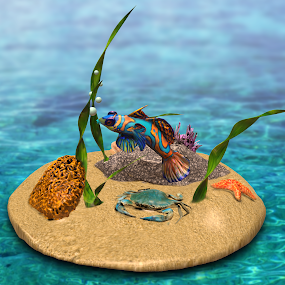 Aquarium Scene by Charlie Alolkoy - Illustration Animals ( water, coral, fish, seaweed, starfish, tropical, aquarium, ocean, crab )