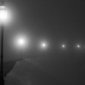 Lantern by Adrijan Pregelj - Landscapes Starscapes ( lights, fog, snow, night, road, alone )