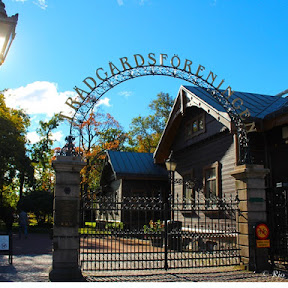真冬のスウェーデンでも南国気分を味わえる?ヨーテボリの園芸協会公園(Trädgårdsföreningen)