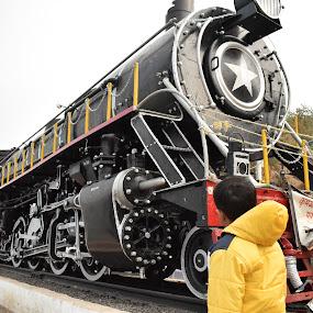 Very old Indian Steam Locomotives by Basant Malviya - Transportation Trains ( locomotive, seam engine, train,  )