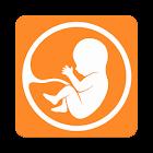 Agenda de gravidez e parto. O auxílio duma doula. icon