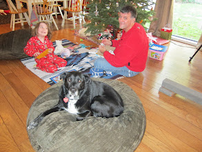 Photo: Fianna, Dutch and JB on Christmas Day, 2013