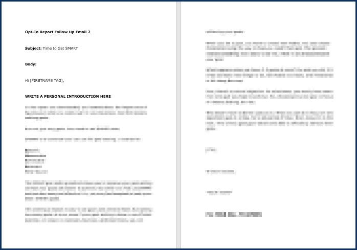 Rapid Results Marketing Formula - OptIn Email 2